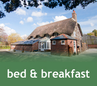Bed And Breakfast Near Studland